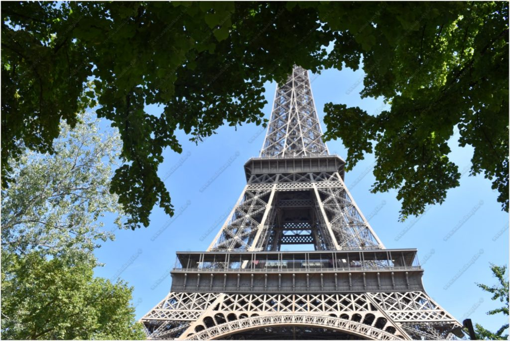 The Eiffel Tower in Paris Experience