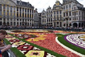 Why You Should View The Flower Carpet In Brussels