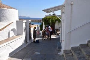 Riding a donkey in the city of Lindos