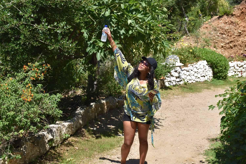 Botanical Gardens and Park of Crete