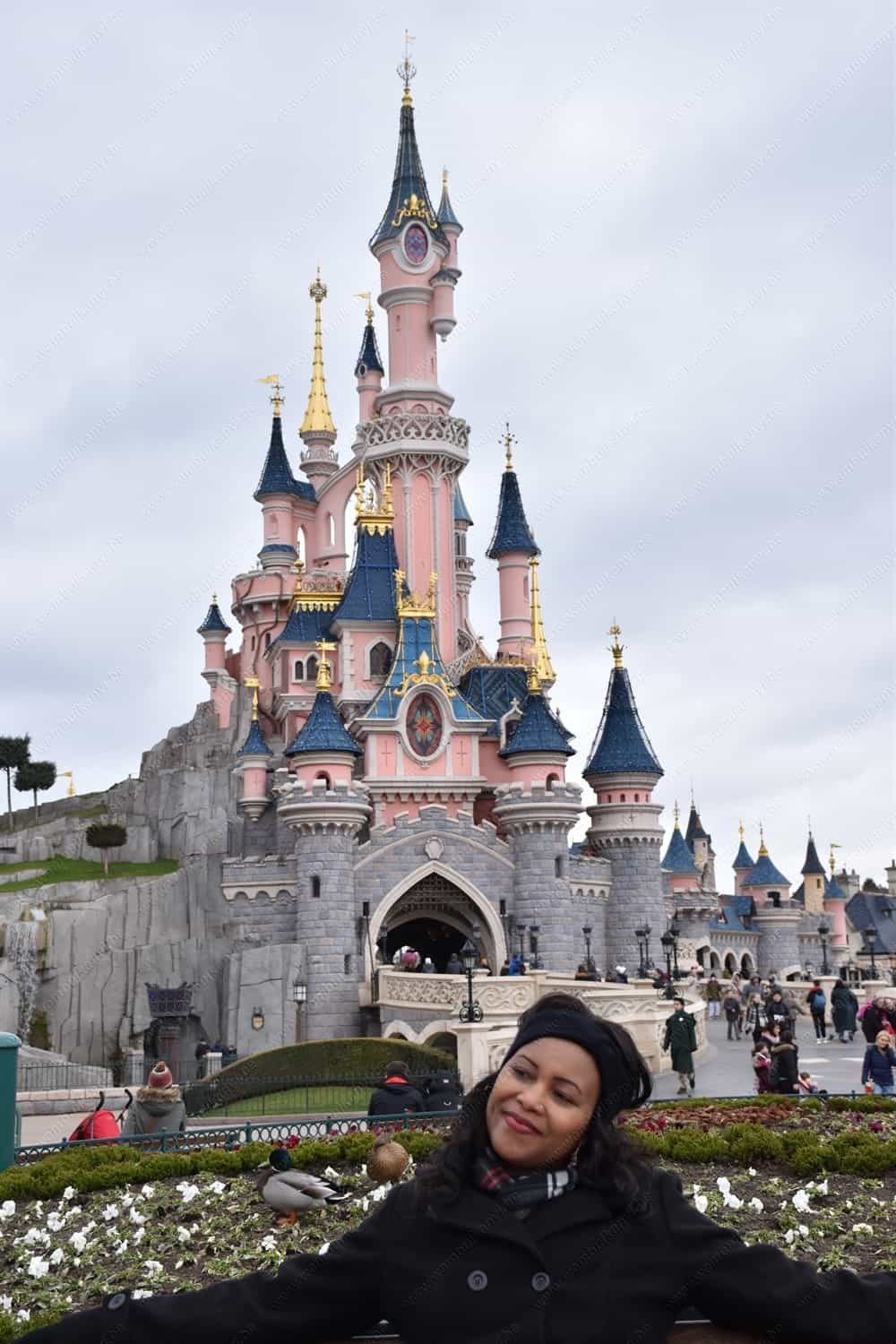 The Sleeping Beauty Castle