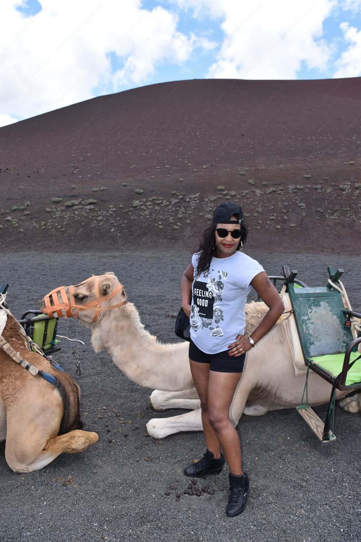 Camel Ride in the Timanfaya Lanzarote