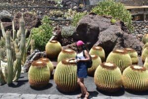 Jardines de Cactus in Lanzarote